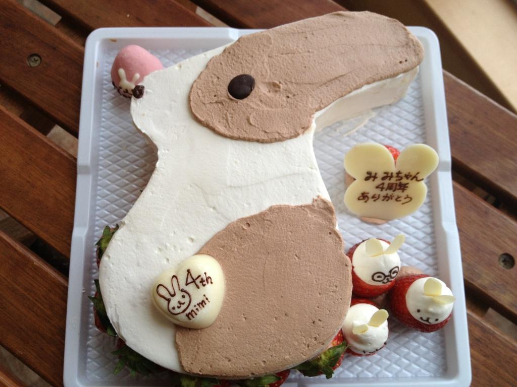 お知らせ&うさぎさんケーキ